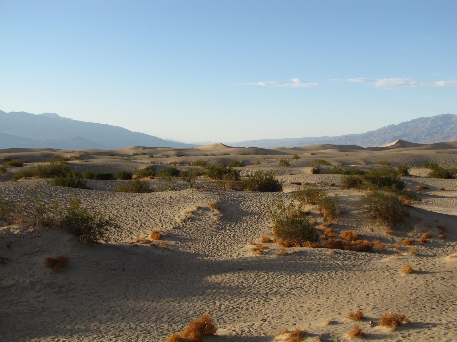 Dunes de sables vallée de la mort