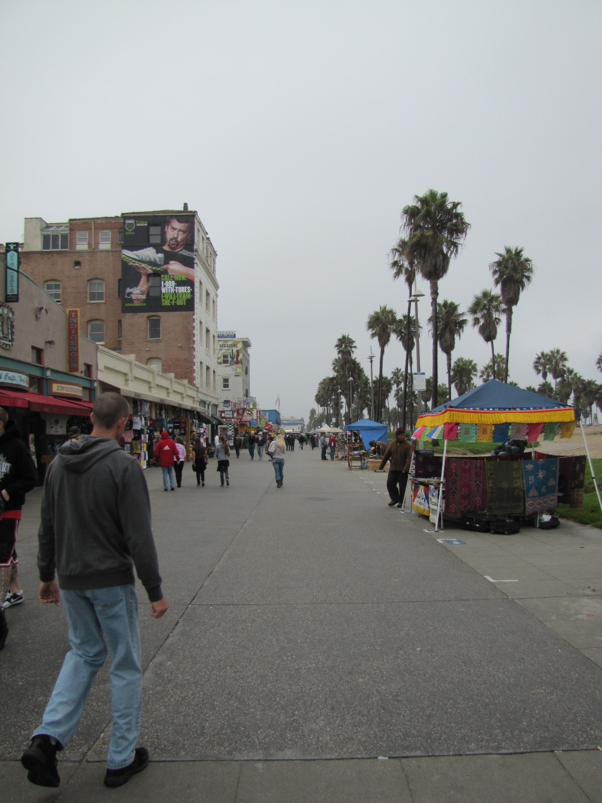 Venice beach front view